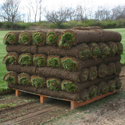 Palletized Small Roll